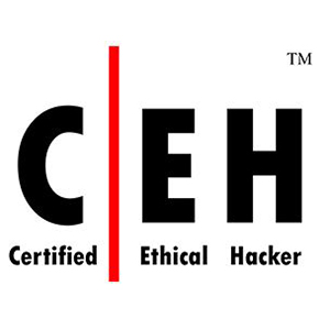 Our Specialties | Cyber Security | Certified Ethical Hacker | blueStone Staffing