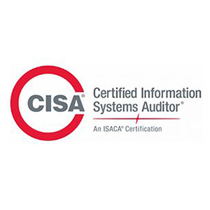 Our Specialties | Cyber Security | CISA | blueStone Staffing