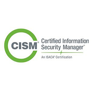 Our Specialties | Cyber Security | CISM | blueStone Staffing