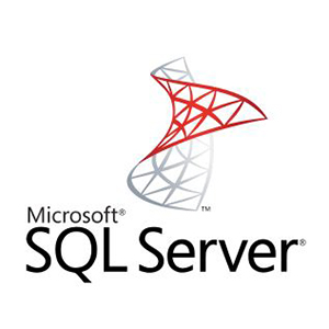 Our Specialties | Application & Web Development | SQL Server | blueStone Staffing