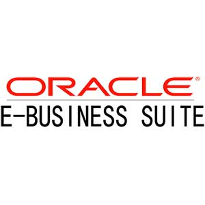 Oracle Consultants | blueStone Staffing